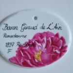Baron - Rosenschild